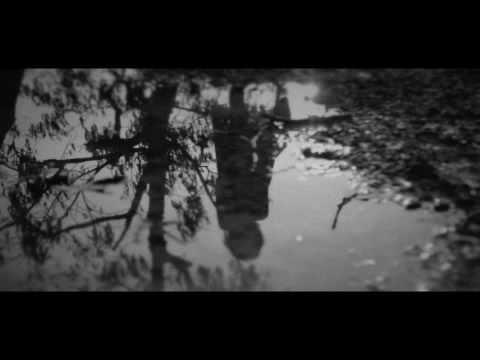 Mind Roots MV