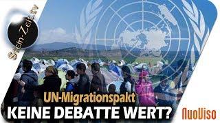 Globaler Migrationspakt - Keine Debatte wert? - SteinZeit mit Erich Hambach & Peter Herrmann