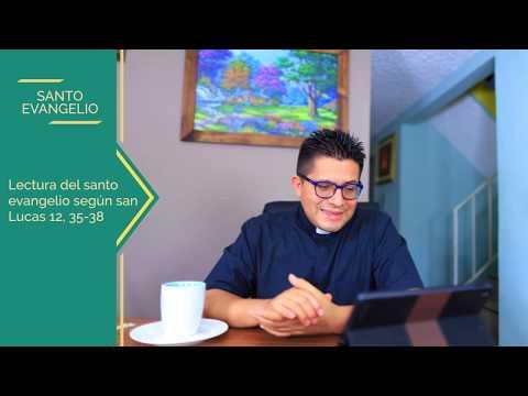 Evangelio del día martes 22 de octubre 2019 - pecado