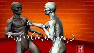 MMA Training Video Human Weapon