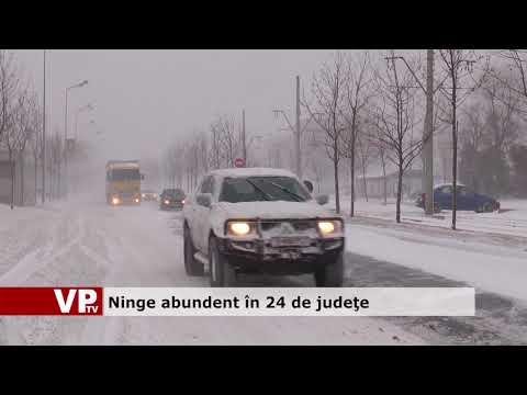 Ninge abundent în 24 de judeţe.