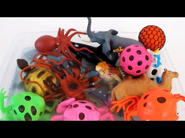 Learn Colors Squishy Balls Colors Frog Toy Videos for Kids Sea Animals and Lots of Zoo Wild Animals