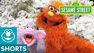 Sesame Street: Murray Goes to Gardening School
