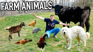 SPENDING 24 HOURS STRAIGHT WITH MY FARM ANIMALS!