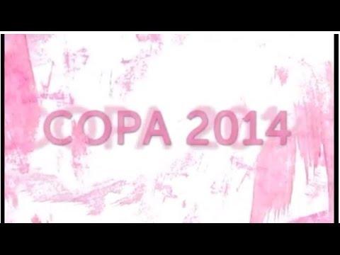Copa 2014 - O que as mulheres têm a ver com isso?