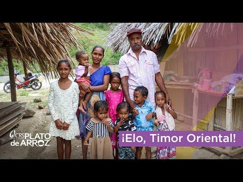 Semana 4 (Timor Oriental)