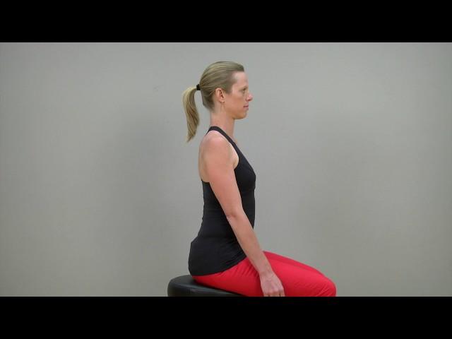 Scapular retraction (sitting)