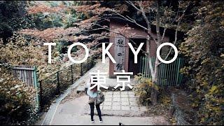 Early Autumn in Japan | Tokyo, Nagoya and Osaka Travel Highlights | Kholo.pk
