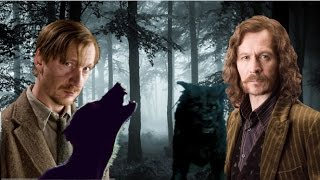 Why Did Sirius Black Attack Remus Lupin First?