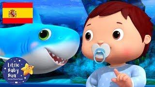 Canciones Infantiles   El Baile de Bebé Tiburón   Dibujos Animados   Little Baby Bum en Español