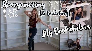 ▵ Reorganizing My Bookshelves ▵