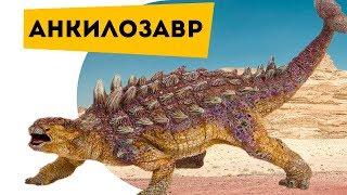 Динозавры Анкилозавр против тираннозавра. Про динозавров детям Ankylosaurus Познаватель кот Семен