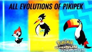 Toucannon  - (Pokémon) - Pikipek evolves into Trumbeak and then into Toucannon   Pokémon Ultra Sun and Ultra Moon