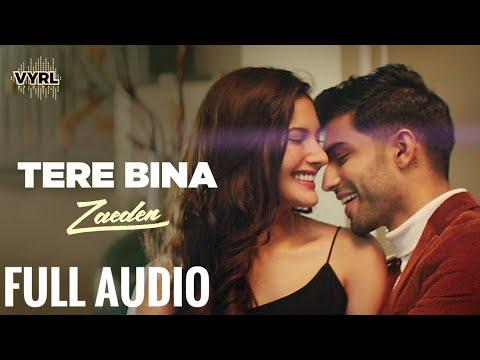 tere bina - Full Audio - Zaeden   ft. Amyra Dastur   Kunaal Vermaa   VYRLOriginals