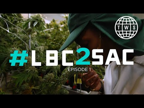 Weedmaps #LBC2SAC Episode 1