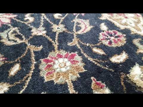 Expensive Rug Destroyed by Clothing Web Moths in Holmdel, NJ