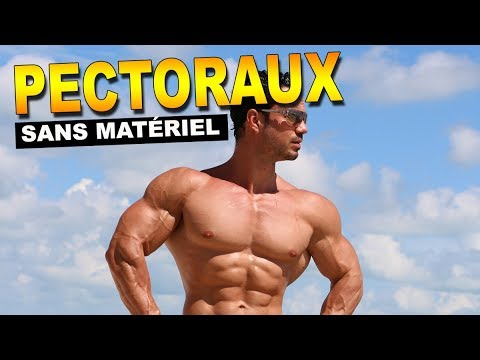 Quels muscles sont faits participer à létude sur