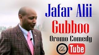 Jafar Alii, Gubboo (Oromo Comedy)