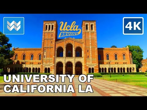 Campus Tour of UCLA (University of California, Los Angeles) Virtual Walk 【4K】
