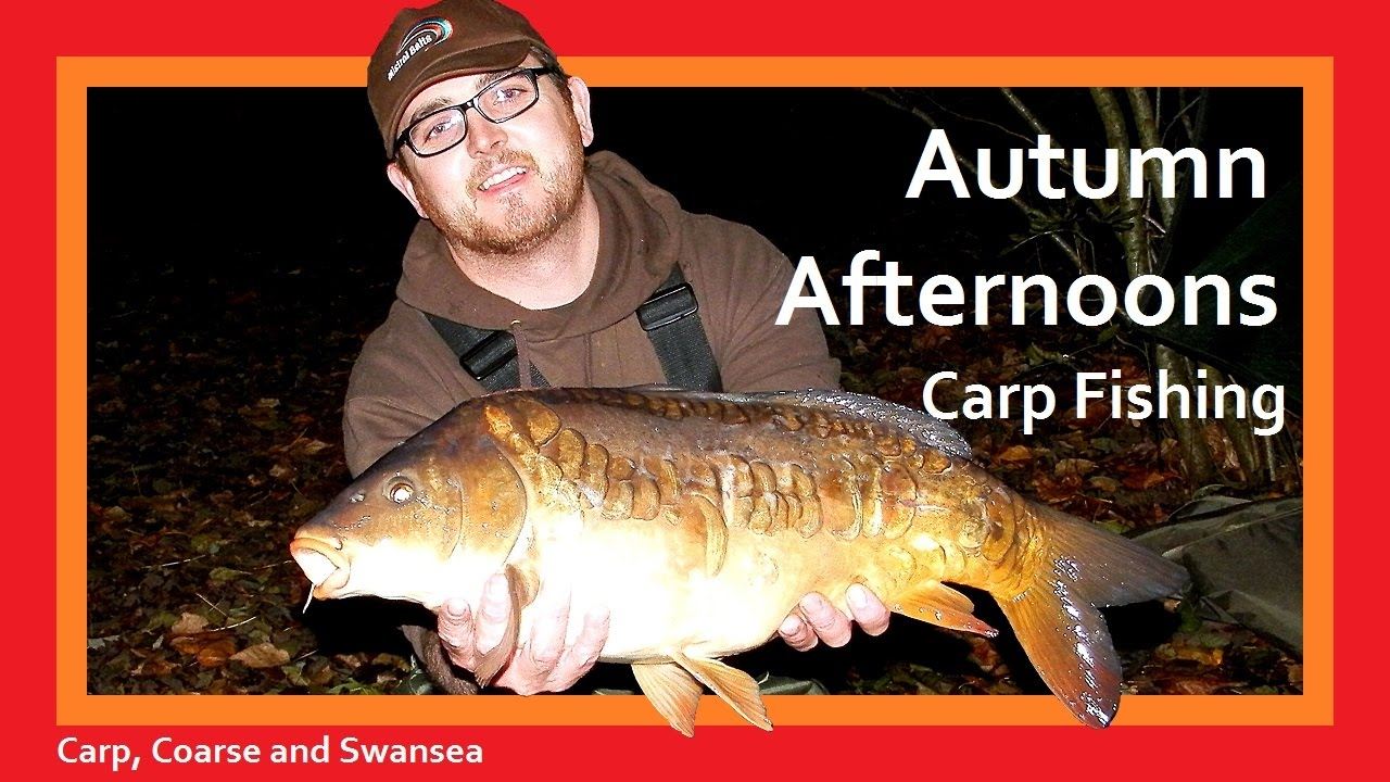 Autumn Afternoons Carp Fishing. Carp, Coarse and Swansea Video 145