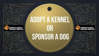 Adopt A Kennel Or Sponsor A Dog