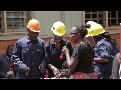The role of the private sector in skills development