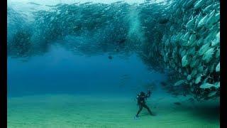подводная охота в Избербаше лето 2019