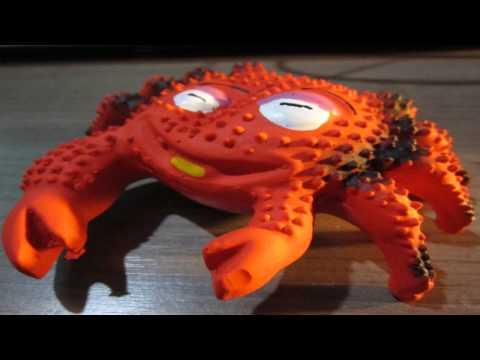 Juguetes para perros y mascotas con sonido - El cangrejo chillon
