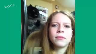 Угарные приколы с котами!:)