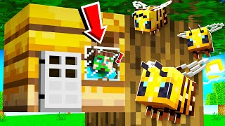How to LIVE inside a BEE HIVE in Minecraft!