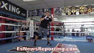 PETR PETROV LIGHT SHADOW BOXING AHEAD OF WBA TITLE ELIMINATOR AGAINST MICHAEL PEREZ - EsNews Boxing