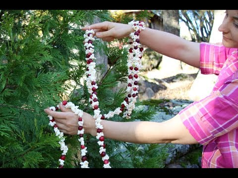 How to Make a Popcorn Garland for your Christmas Tree | Sophie's World