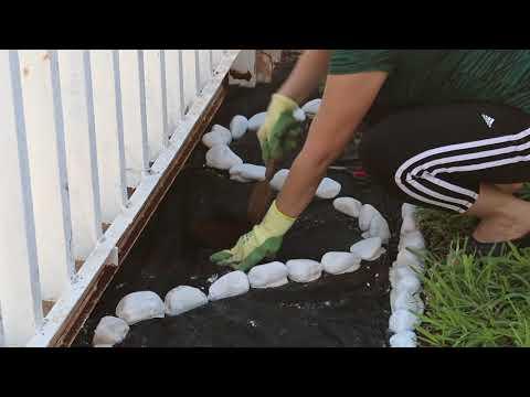 Jardineria. ¿Cómo decorar el jardín con piedras y plantas? Ideas paso a paso. liclonny