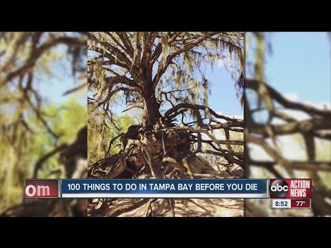 Video 100 Things To Do In Tampa Bay