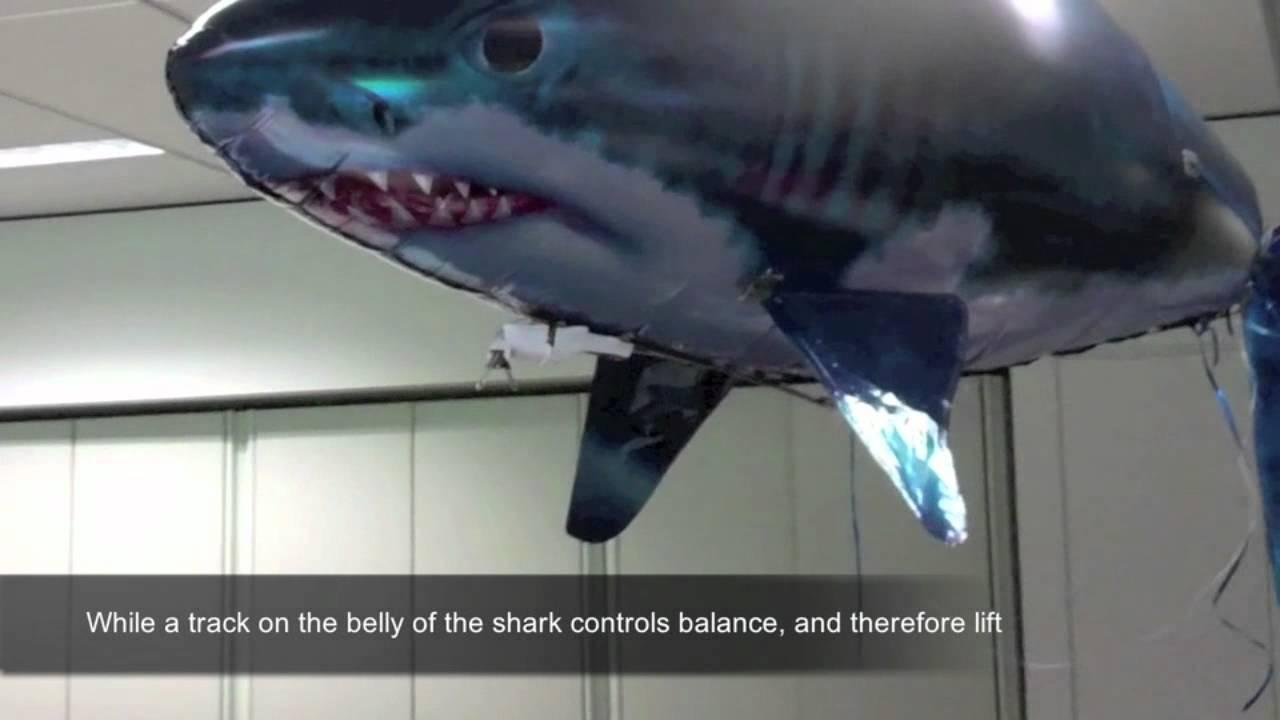 Flying Sharks Attacking New Zealand Pilots