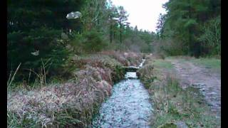 preview picture of video 'Devonport Leat Walk Part 2.'