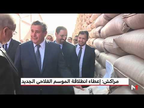 العرب اليوم - عزيز أخنوش يُعلن انطلاق الموسم الفلاحي