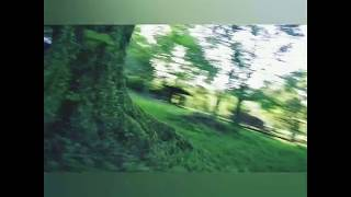 FPV freestyle #3 2inch