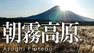 絶景空撮 朝霧高原 富士山 - Aerial view of Mt.Fuji from Asagari Plateau