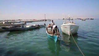 Al Fatxi Fishing