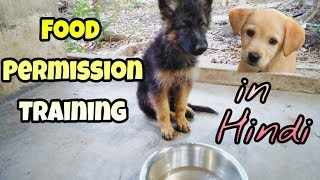 How to give food permission training to a dog in Hindi | Dog training in Hindi |