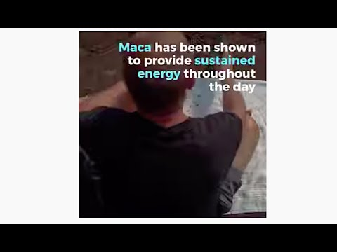Maca: Sustained Energy – Without the Caffeine Crash!