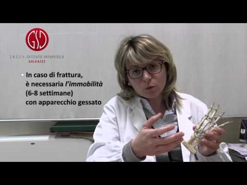 Ginnastica osteoporosi colonna vertebrale cervicale
