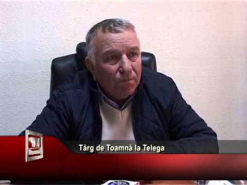 Târg de Toamnă la Telega