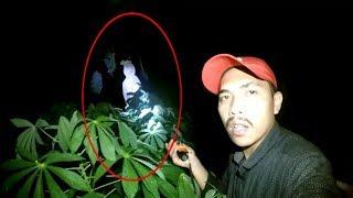 Deket banget   penampakan hantu pocong nyata asli   blusukan di kebun singkong