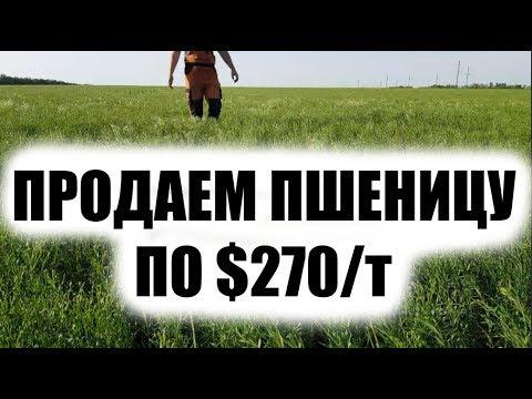 Стратегия для бинарных опционов на 60 секунд видео