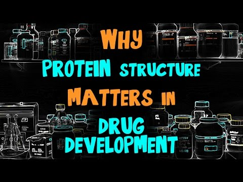 Why Protein Structure Matters in Drug Development: Lab Chat with Steven Almo, Ph.D.