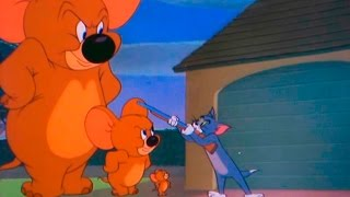 Tom and Jerry -  Episode 74 - Jerry and Jumbo (1951)