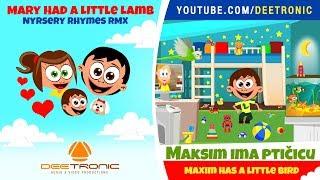MAKSIM IMA PTICICU   Maxim Has A Little Bird   Nursery Rhyme Remix   Mary Had A Little Lamb RMX