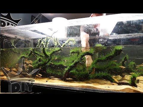 UNEXPECTED AQUARIUM MAKEOVER.... For a new fish